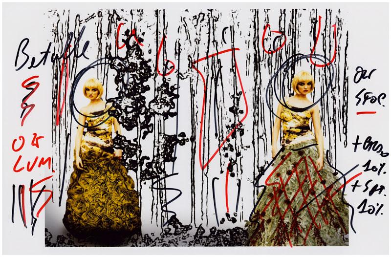 Prova di stampa – Birch Forest